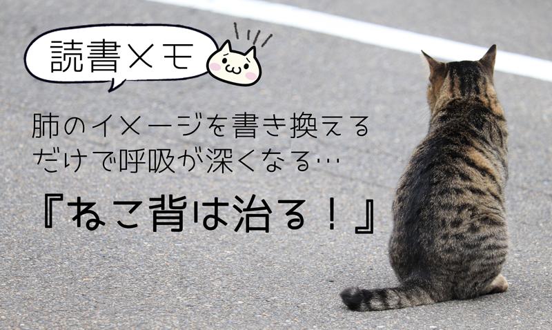 猫背は治る